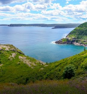 circle newfoundland labrador tour