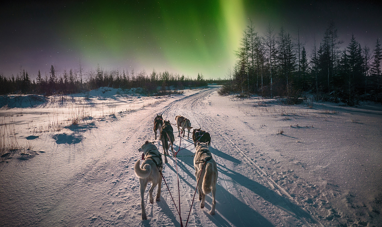northern lights of the yukon activity holiday