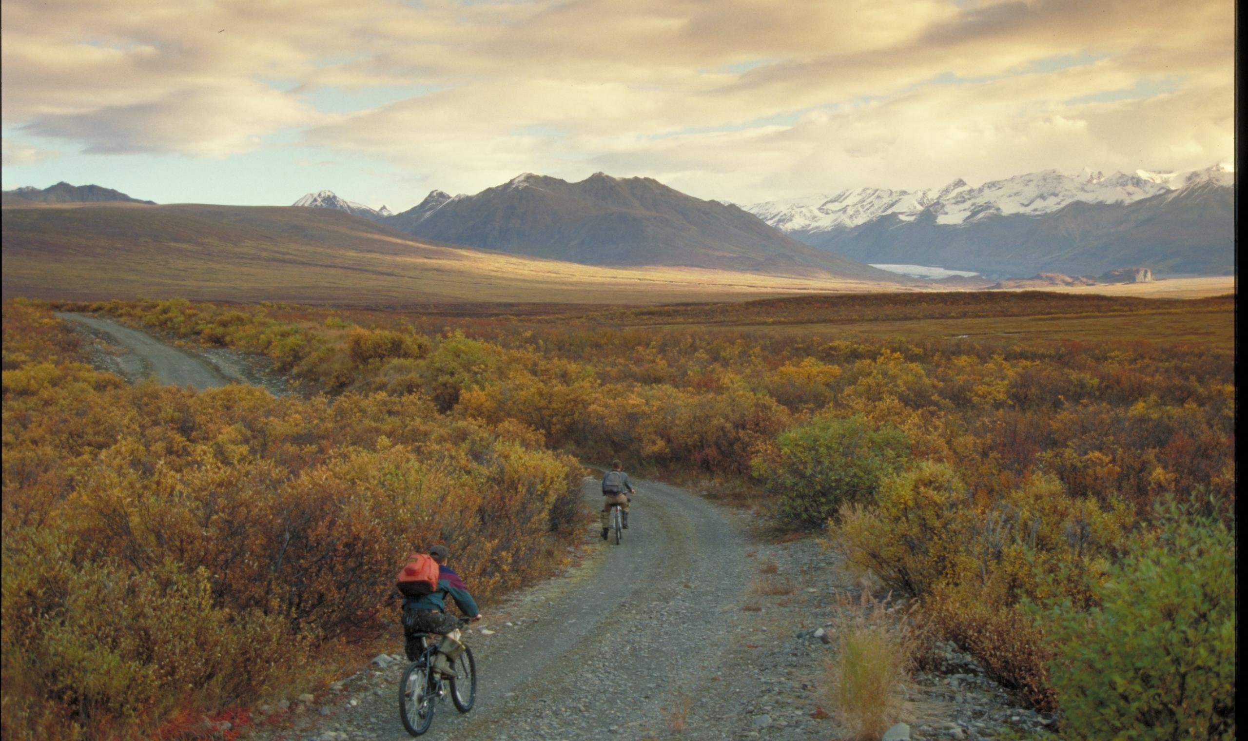 Denali National Park, Alaska | Canadian Affair